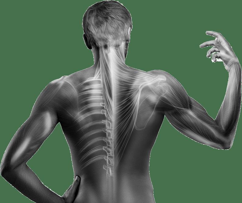 Masso-kinésithérapie | Ostéopathe à Marcillac-Vallon